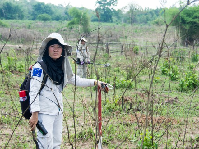Lumngen supervises her demining team in Xepon, Laos.