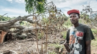 The villages of Saint-Louis-du-Sud and Cavaillon, near Les Cayes (the main city of sud province) have lost their harvests. Jean-Claude has lost his entire manioc crop.