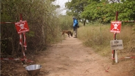 Jonathan Matambo, dog handler and deminer and Katja, mine detection dog in Diagnon.
