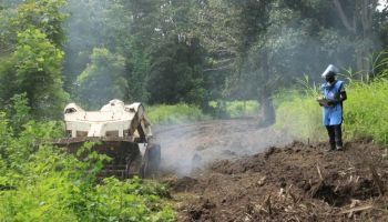 HI mine clearance experts return to Casamance, Senegal